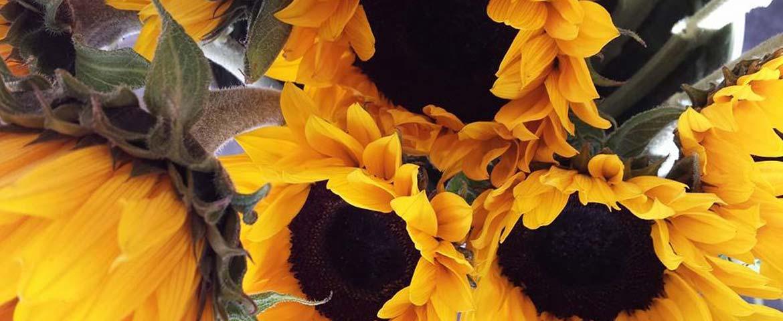 florist_winchester_flowers_slide_2